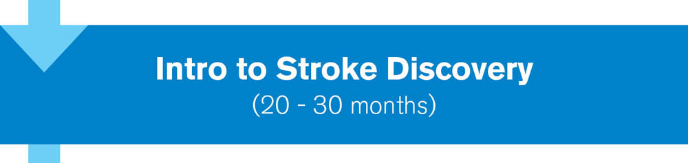 Intro to Stroke Discovery