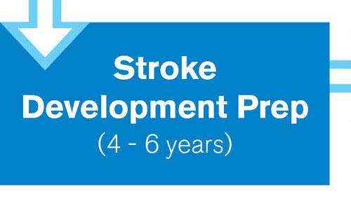 Stroke Development Prep
