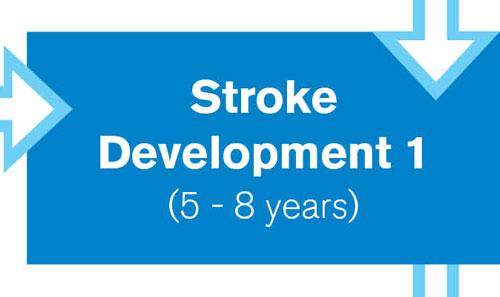 Stroke Development 1