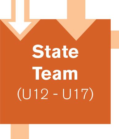 State Team