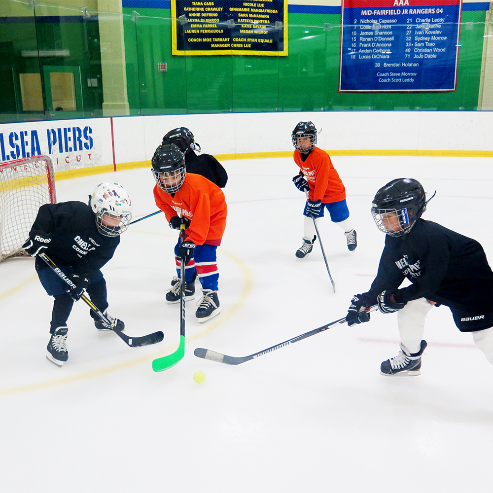 Mite Elite Hockey Camp